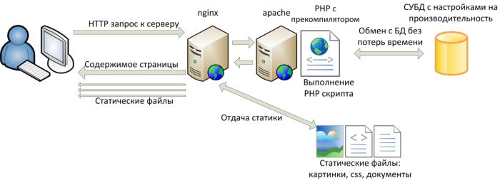 Cdn сервера битрикс livetex bitrix24